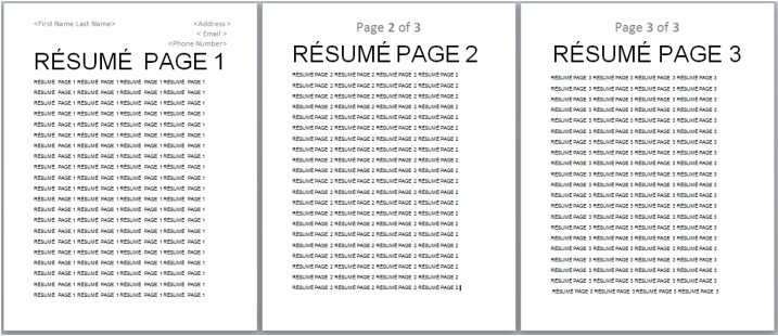 Example Resume Two Page Resume Samples Two Page Resume Samples Two Page  Resume Format Google Product  Sample Two Page Resume